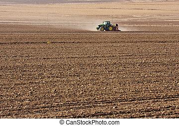 tractor, plantación, trigo