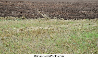 tractor plough close soil