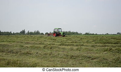 tractor rake turn hay - tractor turning raking cut hay with...