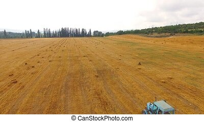 Tractor rides over the field, forming hay in bales