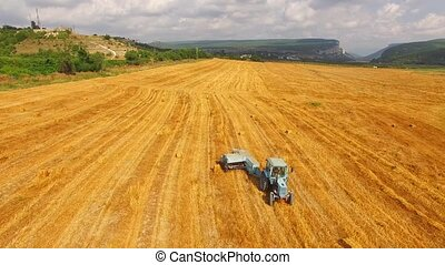 Tractor rides through the field with harvested crops....