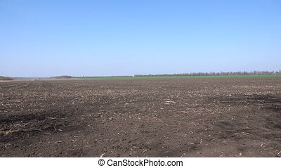 Tractor sows a field in spring
