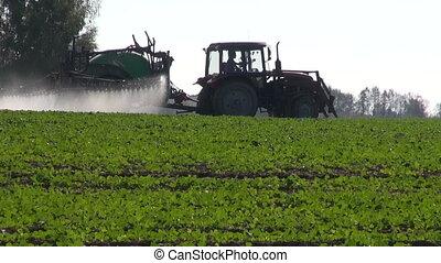 tractor spray rapeseed crop field - farm tractor spray...