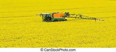 Tractor spraying rape field