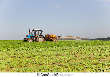 Tractor spraying the field