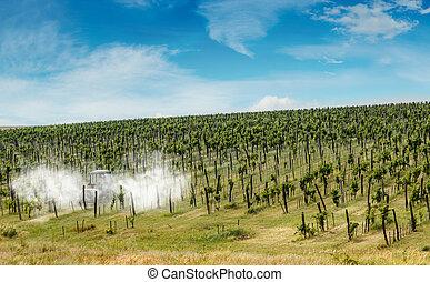 Tractor spraying vineyard