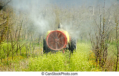 Tractor sprays insecticide in cherry orchard