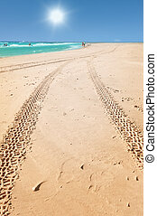 tractor tracks on the beach