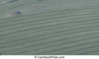 Tractor turning grass to make hay in summer