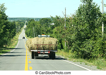 Tractor wagon with rolled hay