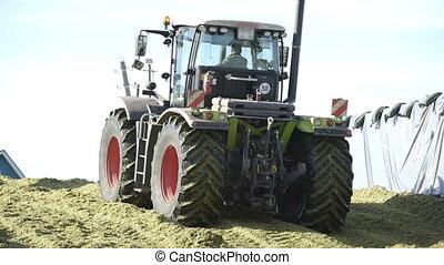 Tractor wheels crush freshly cut agricultural plant. Farmers...