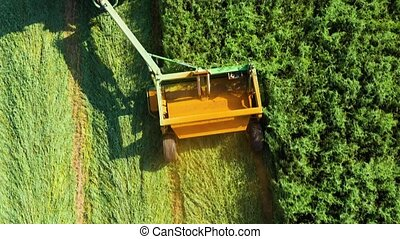 Aerial view of a tractor mowing a green fresh grass field, a farmer in a modern tractor mowing a green fresh grass field on a sunny day