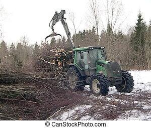 crane unload tree branch