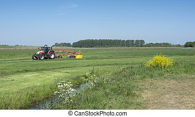 tractor with grass turner and yellow spring flowers in green meadow under blue sky in holland
