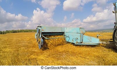 Tractor With Trailer Collecting Straw In Stubble Field -...