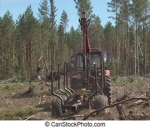 tractors forest cleaning