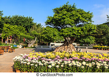 tradicional, chino, jardín, con, flores coloridas