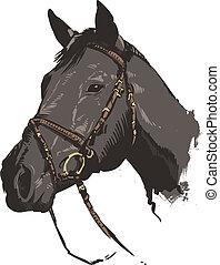 tradicional, estilo, vetorial, cavalo, ilustração