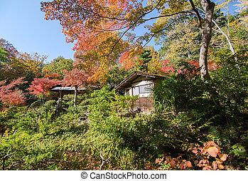 Tradiotioanal House in Autumn Japanese Garden with Maple
