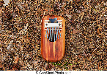 Traditional African musical instrument kalimba on a background of needles and cones in a forest, top view.