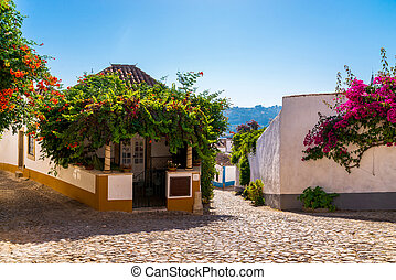 Traditional architecture of old european town. Narrow street of the ancient town. Scenic old town with medieval architecture. Popular tourist destination. White houses and red tiled roofs.