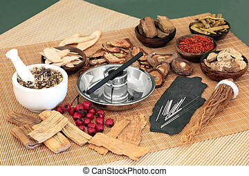 Traditional Chinese Herbal Therapy