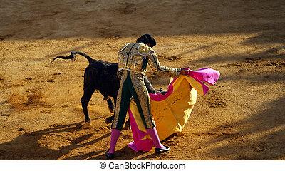Traditional corrida