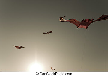 Traditional culture in south Korea, kite flying