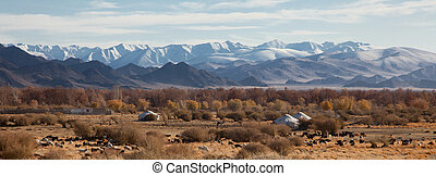traditional dwelling of Mongolian nomadic yurt, a safe haven in a harsh climate
