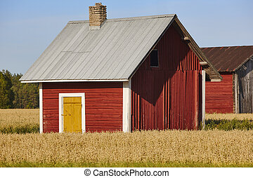 Traditional finnish red wooden farm in the countryside