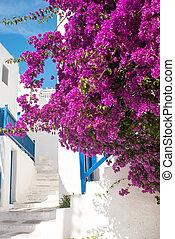 Traditional greek alley on Sifnos island, Greece