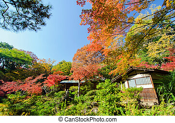 Traditional House in Japanese Garden