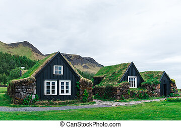 Traditional houses with grass on roof in Iceland