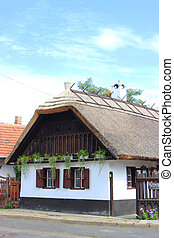 Traditional hungarian village house