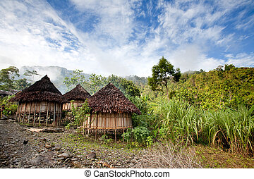 Traditional Hut - A traditional mountain village in Papua,...