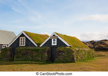 Traditional Icelandic houses with grass roof in...