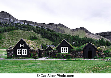 Traditional icelandic houses with grass - Traditional houses...