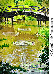 Traditional japanese bridge