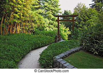 Wooden gate in a bamboo grove