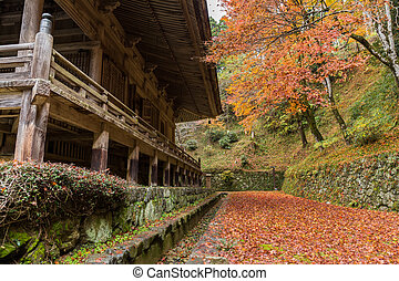 Traditional Japanese temple at autumn