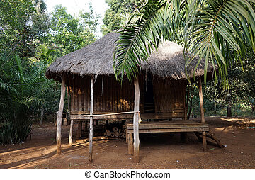 Traditional lao style house