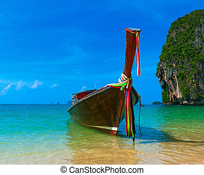 Traditional long tail boat