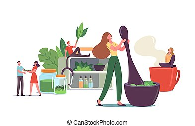 Traditional Medicine Concept. Scientist or Doctors Characters Make Drugs of Medical Herbs and Plants, Preparing Homeopathic Recipes for Personal Use, Ayurvedic Remedy. Cartoon Vector Illustration