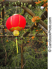 Traditional red New Year's spheres in the Chinese park