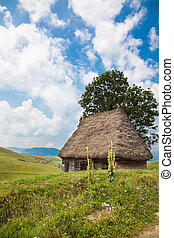 Traditional rustic house in Apuseni Mountains in Romania.