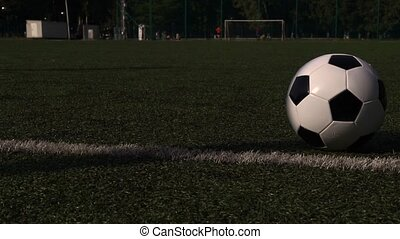 Traditional soccer ball on green grass playground. - Black...