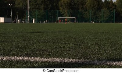 Traditional soccer ball on green grass playground. - Motion...