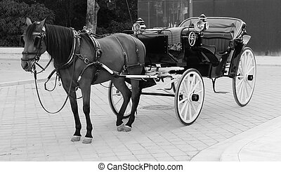 Traditional Spanish Horse and Cart Seville Spain