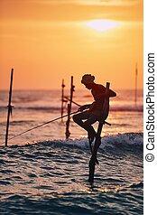 Traditional stilt fishing in Sri Lanka - Silhouette of the ...