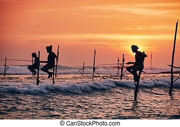 Traditional stilt fishing in Sri Lanka - Silhouettes of the ...